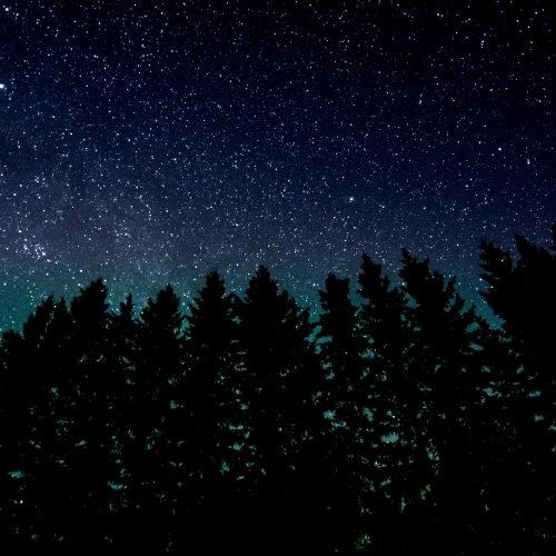 Maybe I love the stars